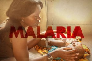 Imagine No Malaria - What Is Malaria