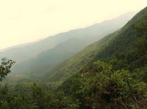Mollies Ridge