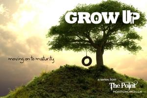Spiritual Maturity 2