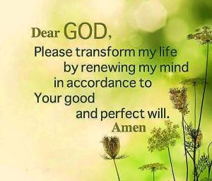 Transform My Mind
