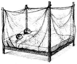 Zika - Mosquito Nets